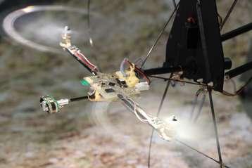 Bio-inspired eye stabilizes robot's flight