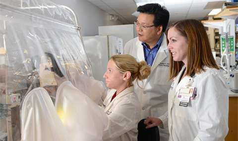 Boosting gut bacteria defense system may lead to better treatments for bloodstream infections