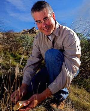 Botanist to study responses of trees, shrubs to extreme drought