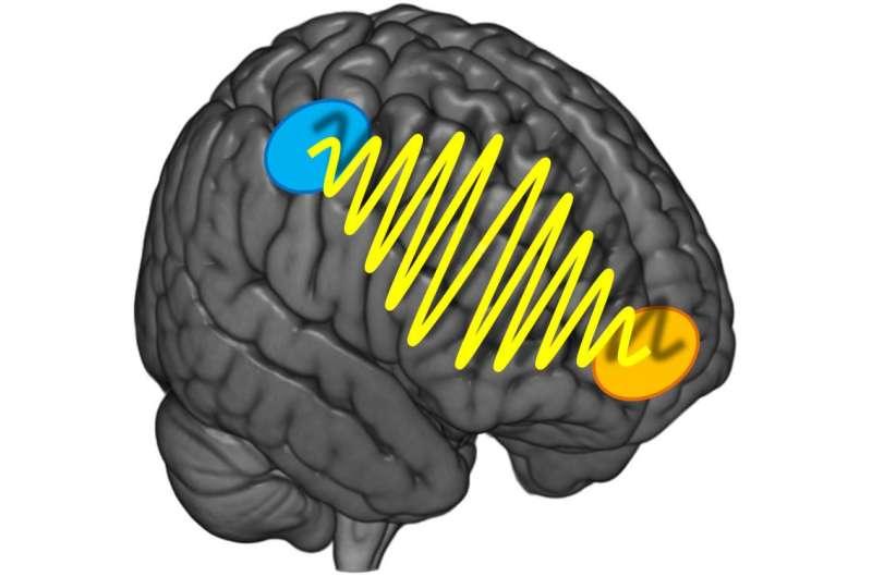 Brain waves behind indecisiveness