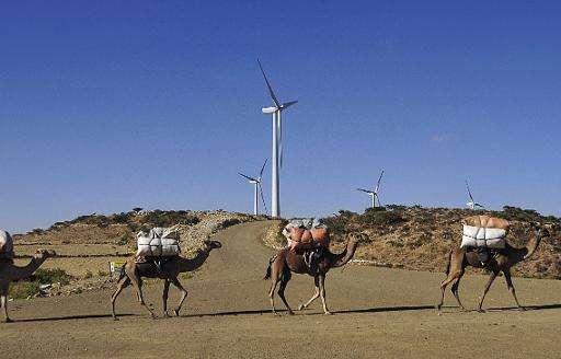 Camels walks along the road near turbines at Ashegoda wind farm in Ethiopia's northern Tigray region, November 28, 2013