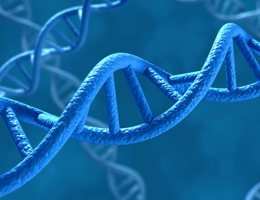 Cells repair damaged DNA by a different mechanism than assumed