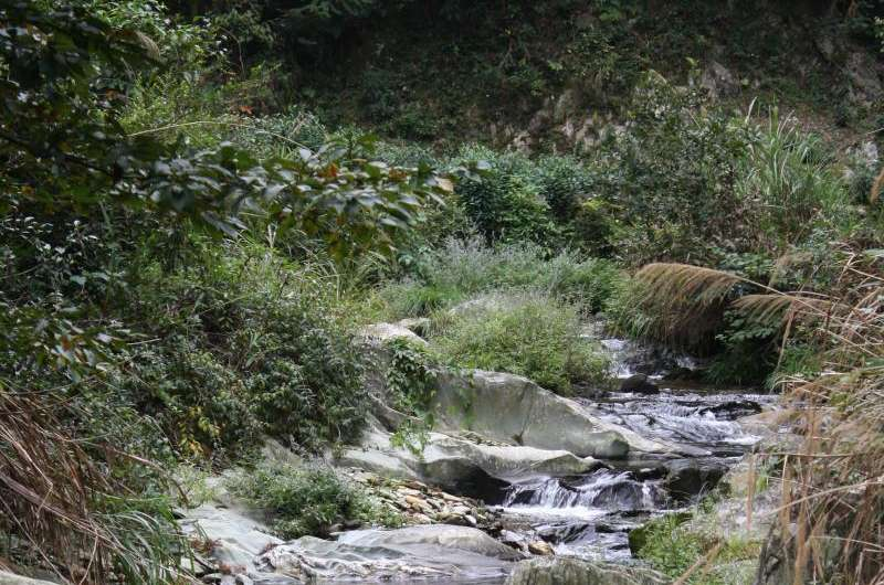 Changes in land use pose greater threat than climate change to biodiversity of rivers and streams