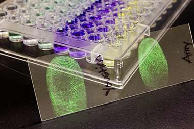 Chemist's technique can identify a fingerprint as male or female