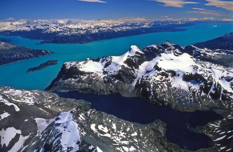 Chile to create Patagonia Marine Protected Area network