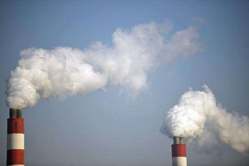 Chimneys spew emissions at a power station in Shanghai on November 28, 2013