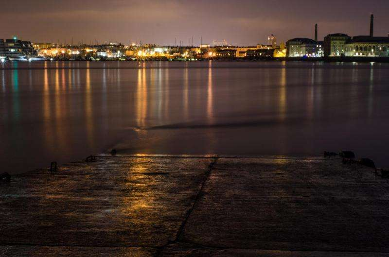 Coastal light pollution disturbs marine animals, new study shows