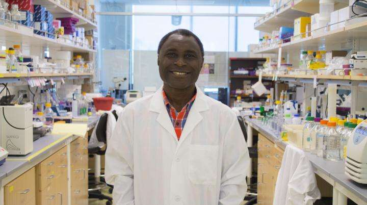Compounds show potential in fighting brain and breast cancers