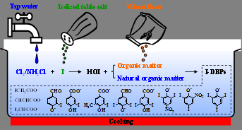 Cooking with chloraminated water and salt could create toxic molecules