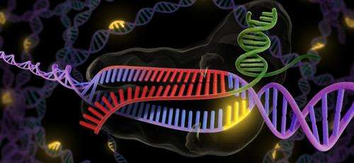 CRISPR technology brings precise genetic editing – and raises ethical questions