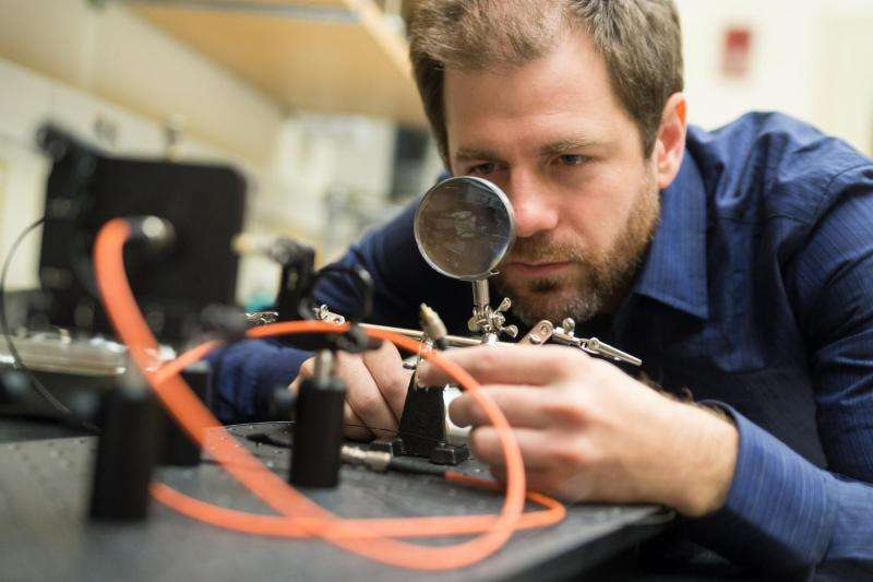 Dartmouth scientists unravel brain circuits involved in cravings