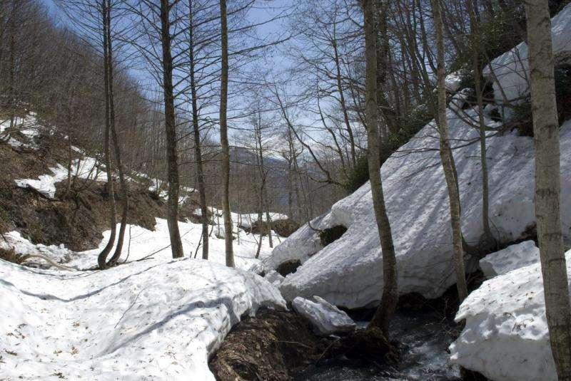 Declining snowpacks may cut many nations' water