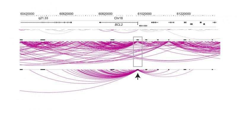 Decoding DNA's phonebook