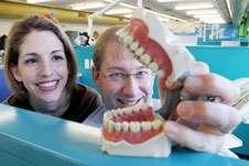 Dental caries prevention breakthrough