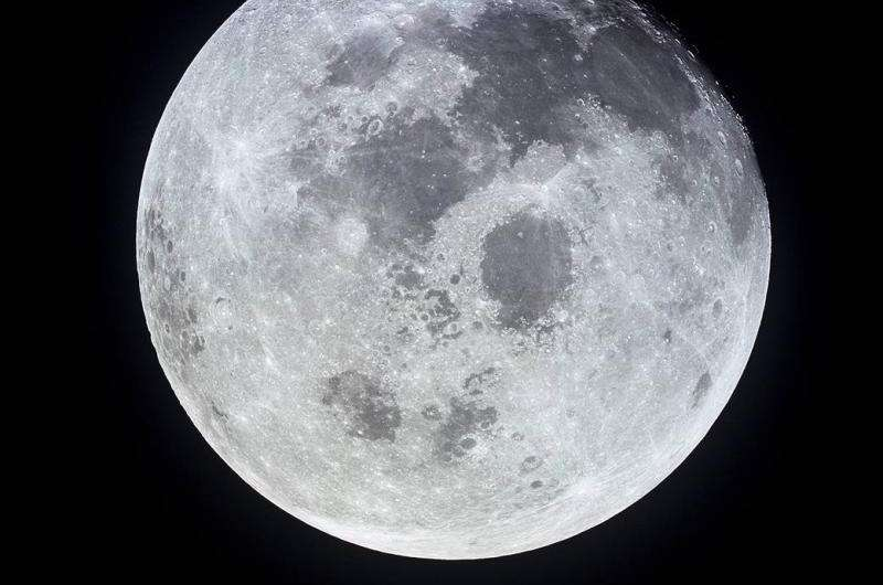 Did we need the moon for life?