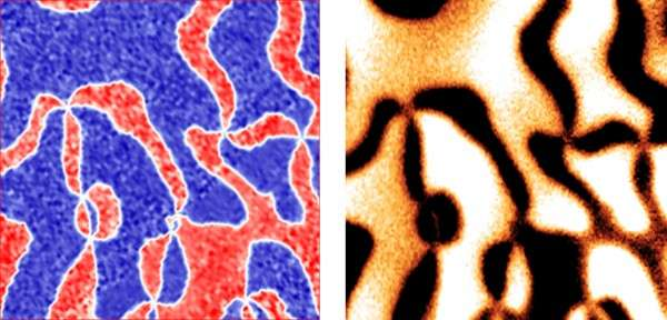 Direct visualization of magnetoelectric domains