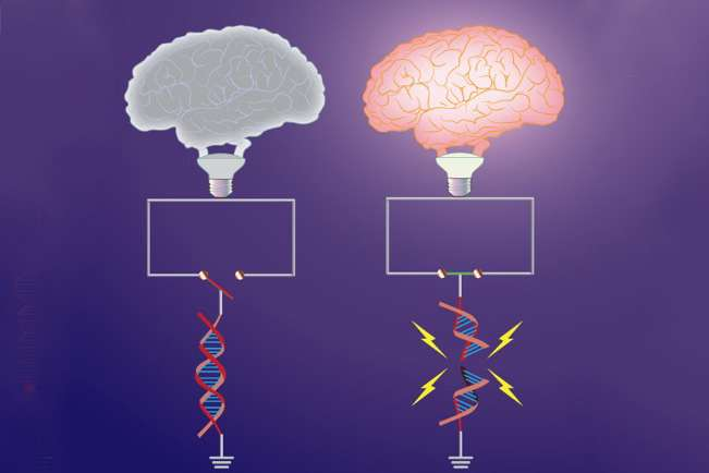 DNA breakage underlies both learning, age-related damage