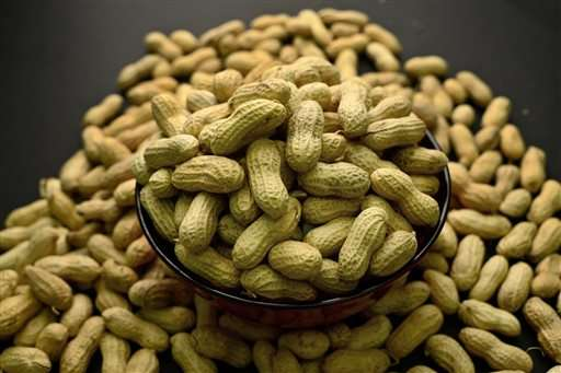 Doctors recommend early exposure to prevent peanut allergies