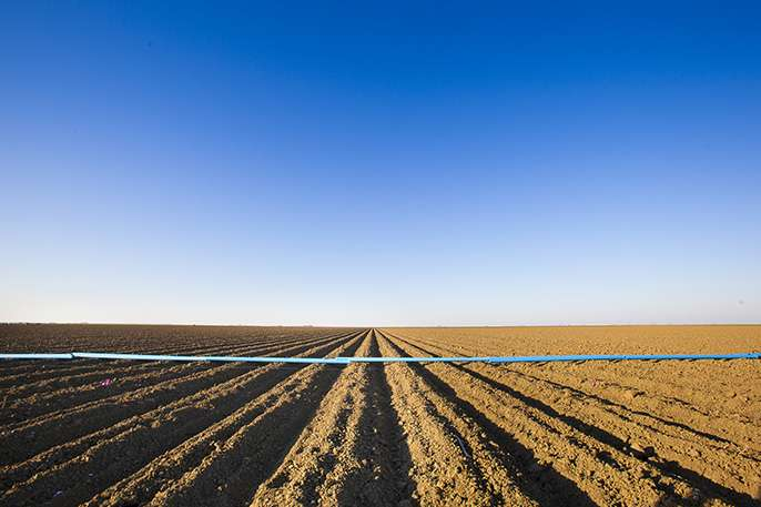 Drought tips available for farmers