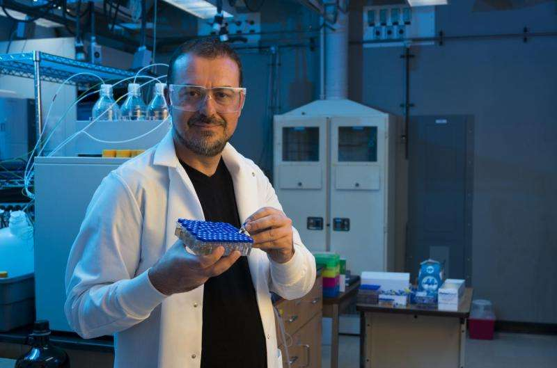 Energy researchers discover new structure for bimetallic catalysts