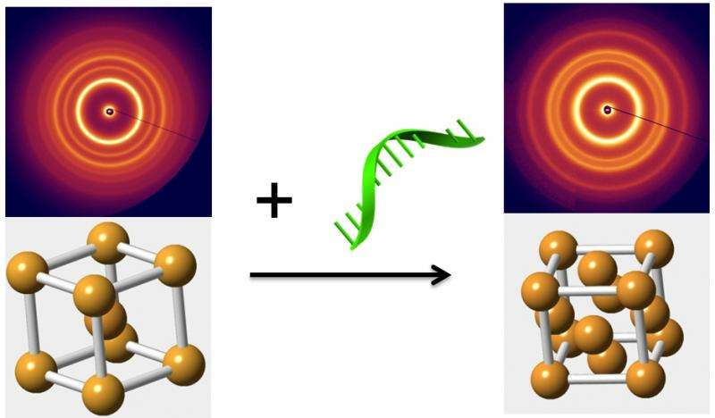 Engineering phase changes in nanoparticle arrays