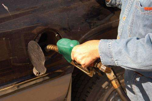 Enhancing microbial pathways for biofuel production