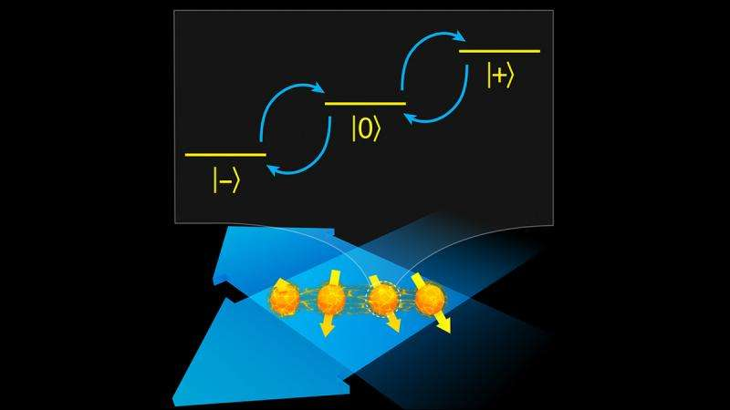 Enlisting symmetry to protect quantum states from disruptions