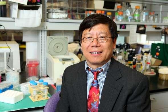 Familiar drugs may block Ebola virus infection