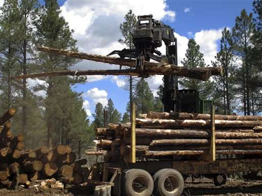 Feds expand efforts to fight wildfires by reshaping forests