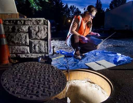 Feds paying for sewer analysis of pot usage in Washington