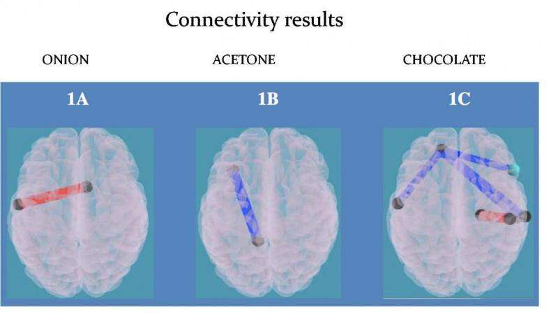 Food odors activate impulse area of the brain in obese children