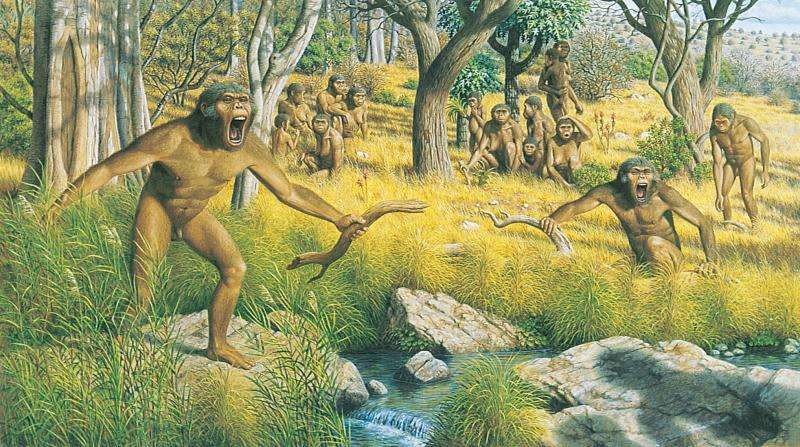 From sticks to stones—getting a grip on the human genus