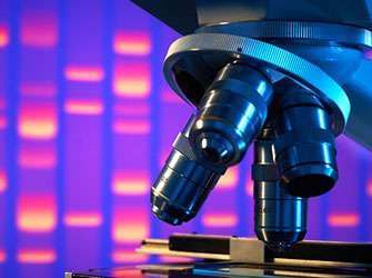 Genetic defect underlying a rare disease identified