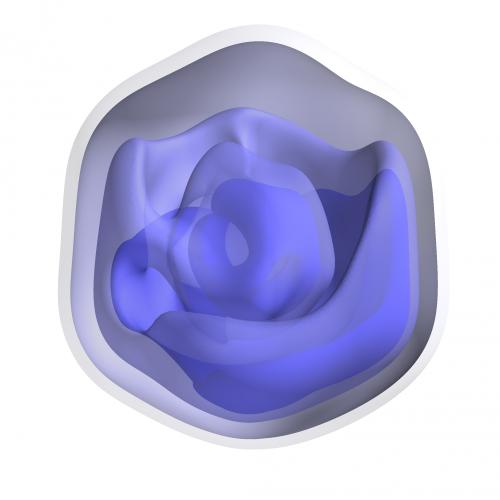 Giant virus revealed in 3-D using X-ray laser