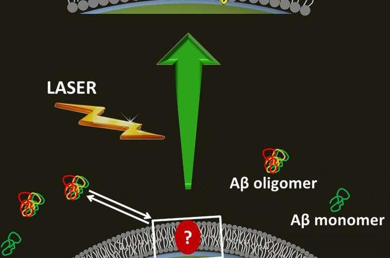 Glitter from silver lights up Alzheimer's dark secrets