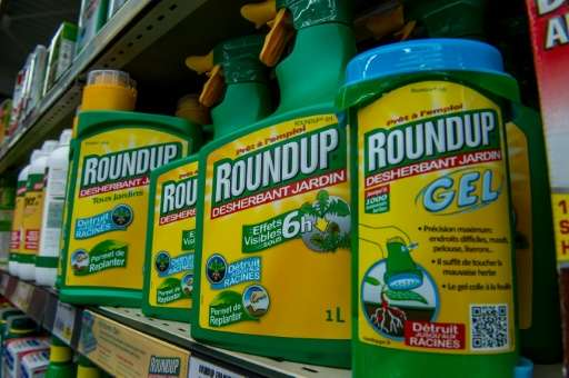 Glyphosate was first used as the active ingredient in the herbicide Roundup, manufactured by US agri-giant Monsanto
