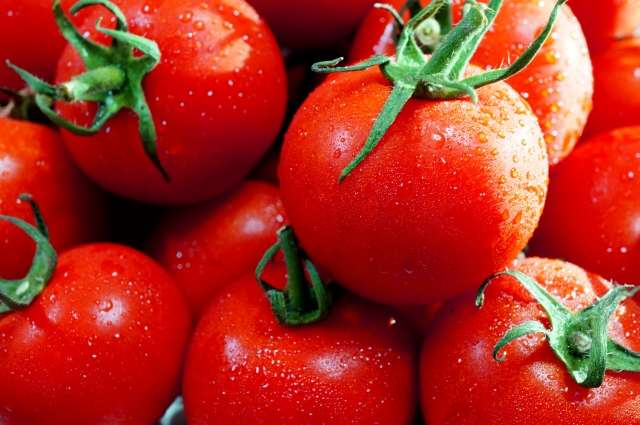 Growing sweet on tomatoes