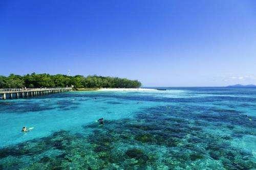 How will ocean acidification impact marine life?