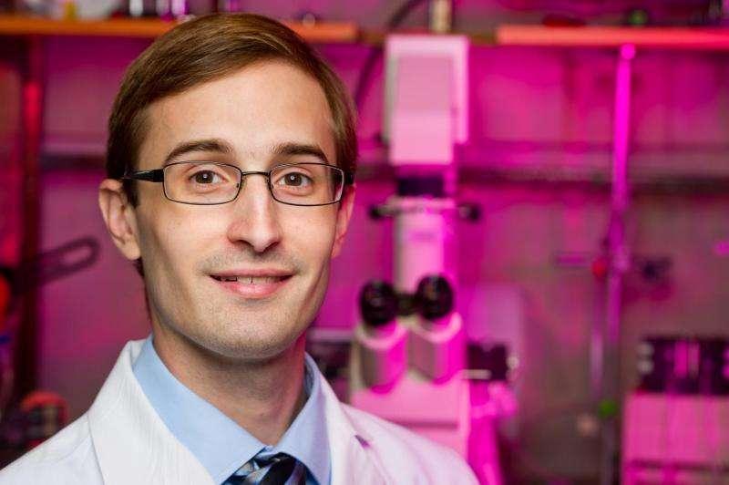 Impact of Type 2 diabetes on lymphatic vessels identified
