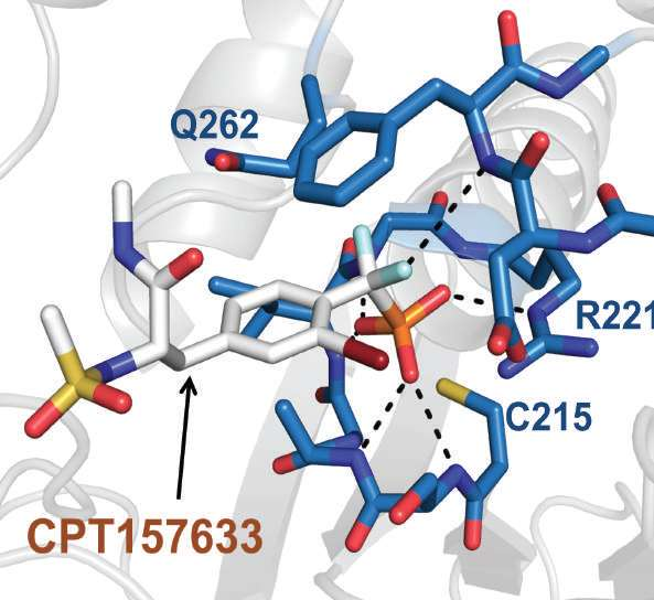 In mice, experimental drug treatment for Rett syndrome suggests the disorder is reversible