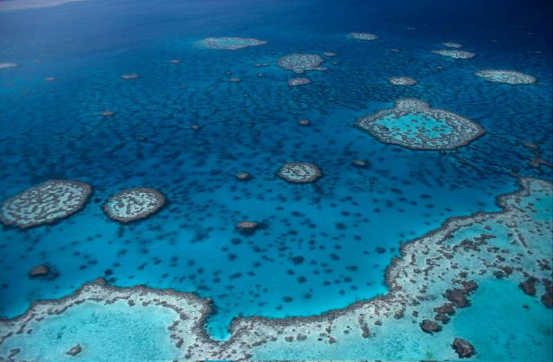 Landmark victory for the Great Barrier Reef