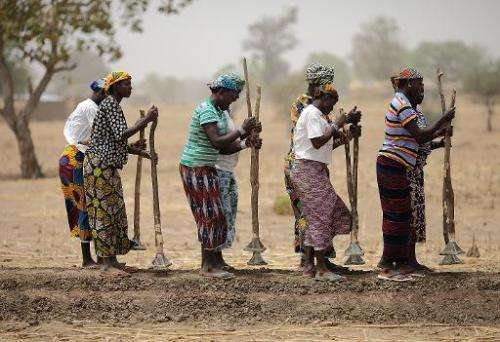 Local women work in a field to build dykes near Diapaga, 300 km northeast of Ouagadougou, Burkina Faso, on March 21, 2012
