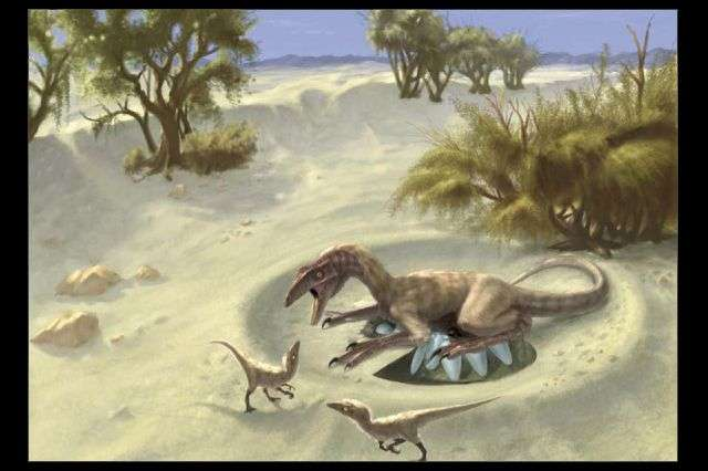 Measurements of dinosaur body temperatures shed new light on 150-year debate