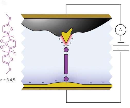 Meet the high-performance single-molecule diode