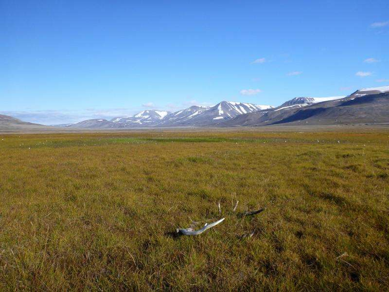 Melting Arctic sea ice accelerates methane emissions