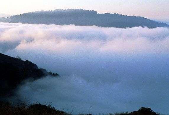 Mercury-laden fog swirls over coastal California, scientists find