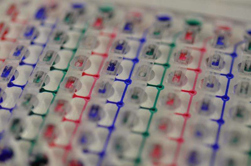 Mimicking the body on a chip for new drug testing