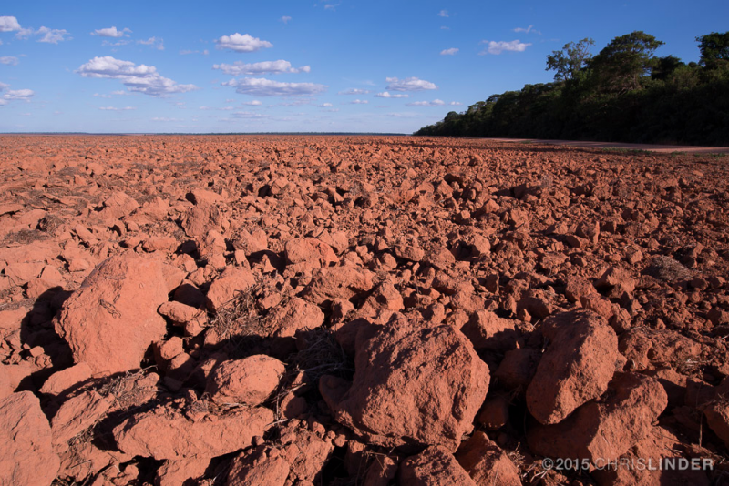More extreme weather projected in the Amazon could have global climate consequences