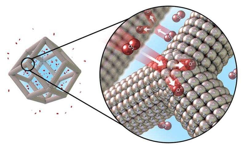 Multimetal Nanoframes Improve Catalyst Performance