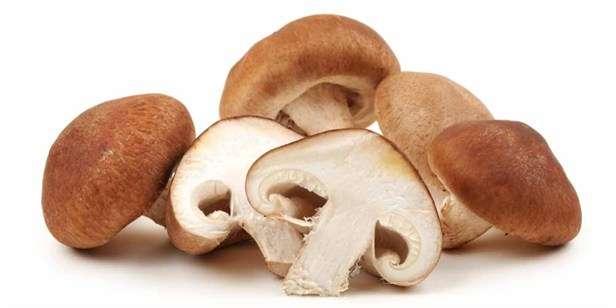 Mushrooms boost immunity